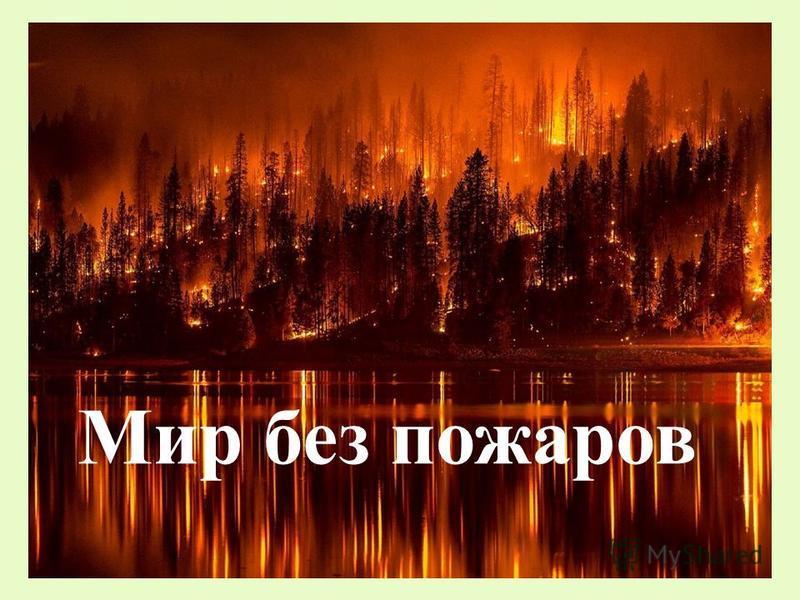 Мир без пожаров