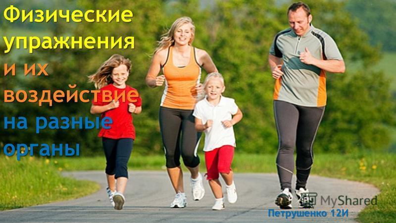 Физические упражнения и их воздействие на разные органы Петрушенко 12И