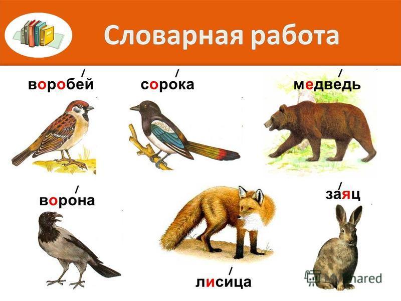 Галина, Григорий, город, гриб, гроза
