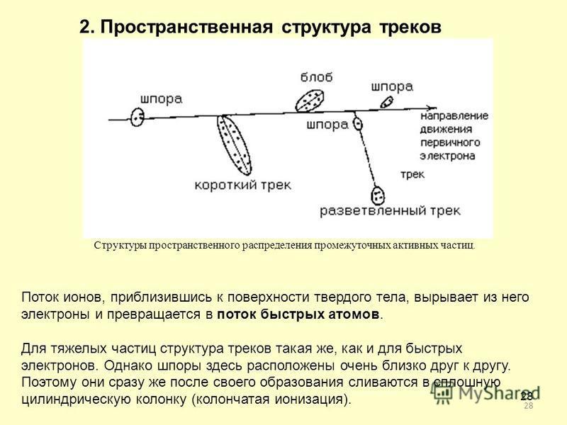 28 2. Пространственная структура треков Структуры пространственного распределения промежуточных активных частиц. Поток ионов, приблизившись к поверхности твердого тела, вырывает из него электроны и превращается в поток быстрых атомов. Для тяжелых час