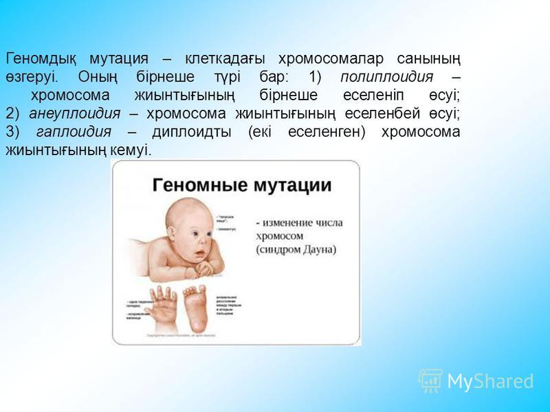 Геномдық мутация – клеткадағы хромосомалар санының өзгеруі. Оның бірнеше түрі бар: 1) полиплоидия – хромосома жиынтығының бірнеше еселеніп өсуі; 2) анеуплоидия – хромосома жиынтығының еселенбей өсуі; 3) гаплоидия – диплоидты (екі еселенген) хромосома
