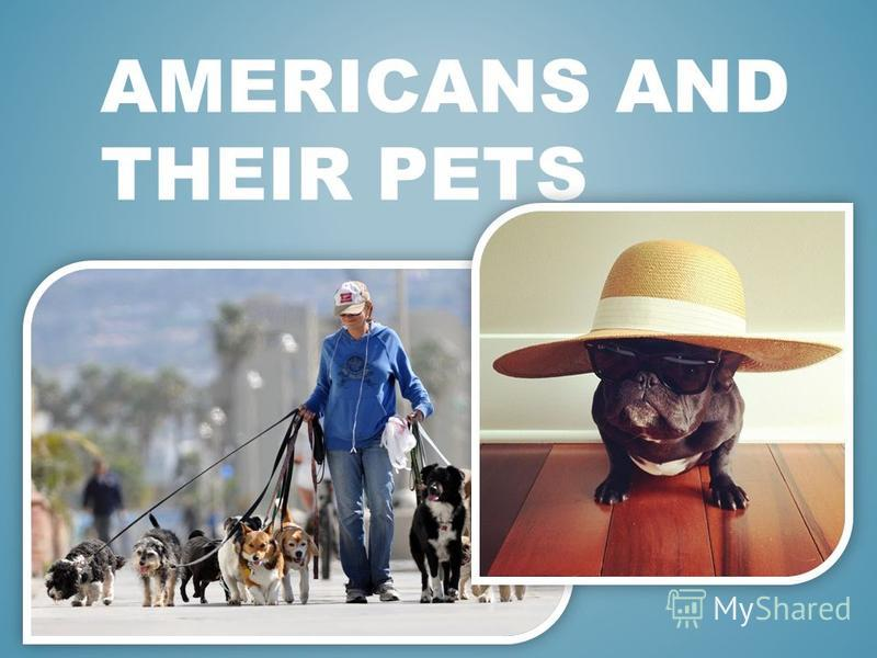 AMERICANS AND THEIR PETS