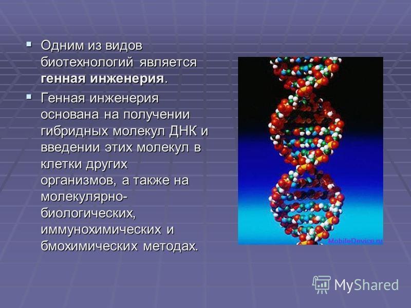 Одним из видов биотехнологий является генная инженерия. Одним из видов биотехнологий является генная инженерия. Генная инженерия основана на получении гибридных молекул ДНК и введении этих молекул в клетки других организмов, а также на молекулярно- б