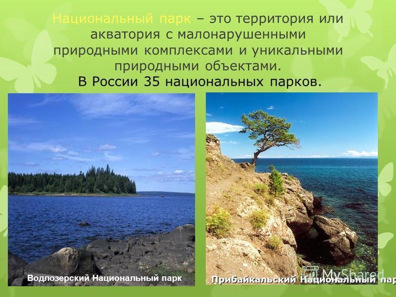 Национальный парк – это территория или акватория с мало нарушенными природными комплексами и уникальными природными объектами. В России 35 национальных парков. Прибайкальский Национальный парк Водлозерский Национальный парк