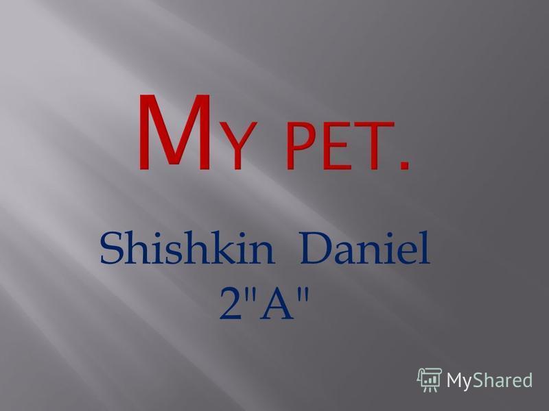 Shishkin Daniel 2A