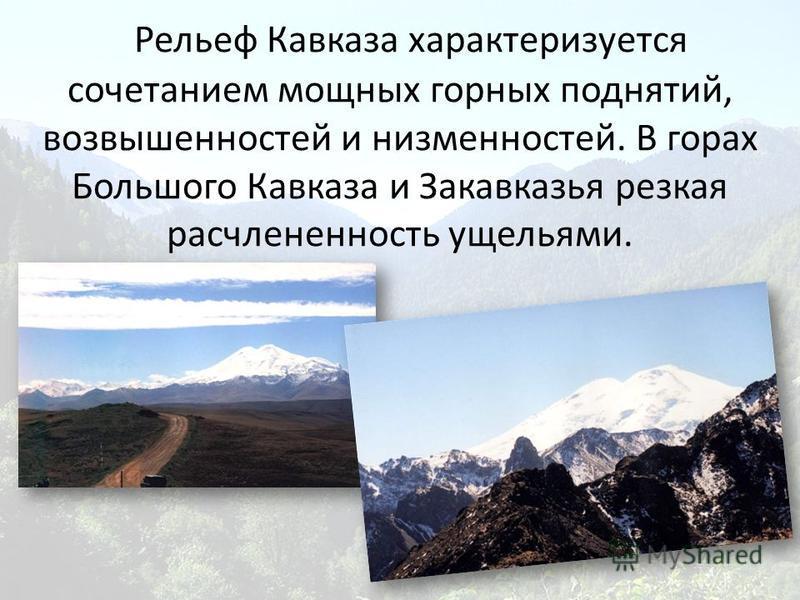 Рельеф Кавказа характеризуется сочетанием мощных горных поднятий, возвышенностей и низменностей. В горах Большого Кавказа и Закавказья резкая расчлененность ущельями.
