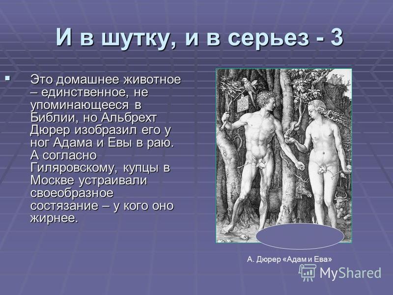 И в шутку, и в серьез - 3 И в шутку, и в серьез - 3 Это домашнее животное – единственное, не упоминающееся в Библии, но Альбрехт Дюрер изобразил его у ног Адама и Евы в раю. А согласно Гиляровскому, купцы в Москве устраивали своеобразное состязание –