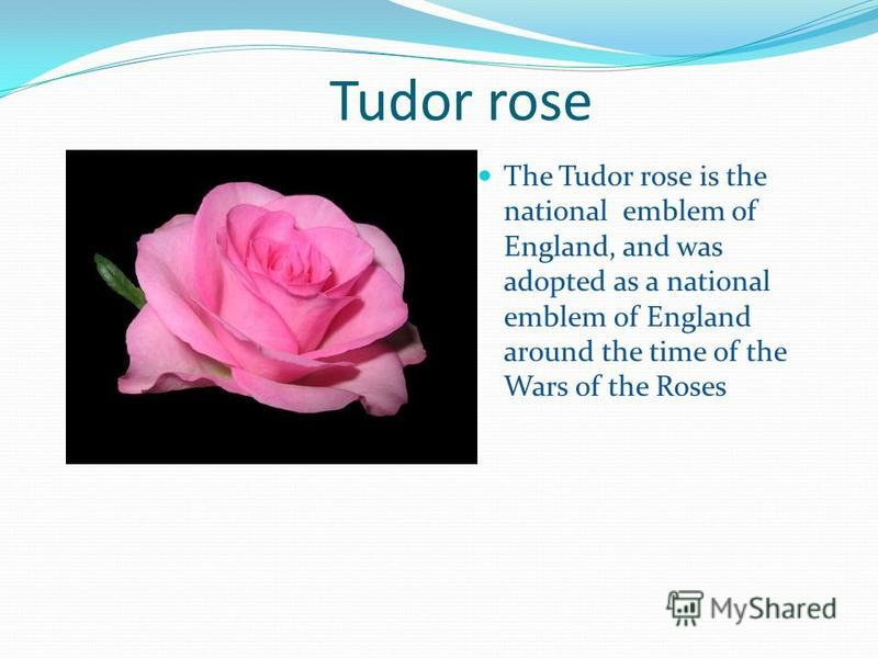 Tudor rose The Tudor rose is the national emblem of England, and was adopted as a national emblem of England around the time of the Wars of the Roses