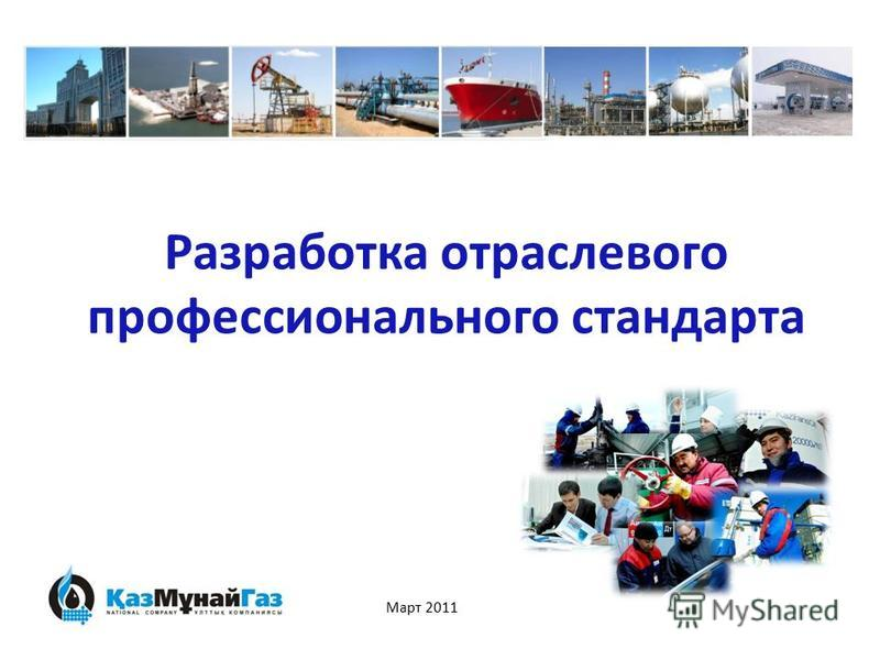 Разработка отраслевого профессионального стандарта Март 2011
