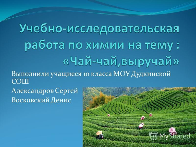Выполнили учащиеся 10 класса МОУ Дудкинской СОШ Александров Сергей Восковский Денис