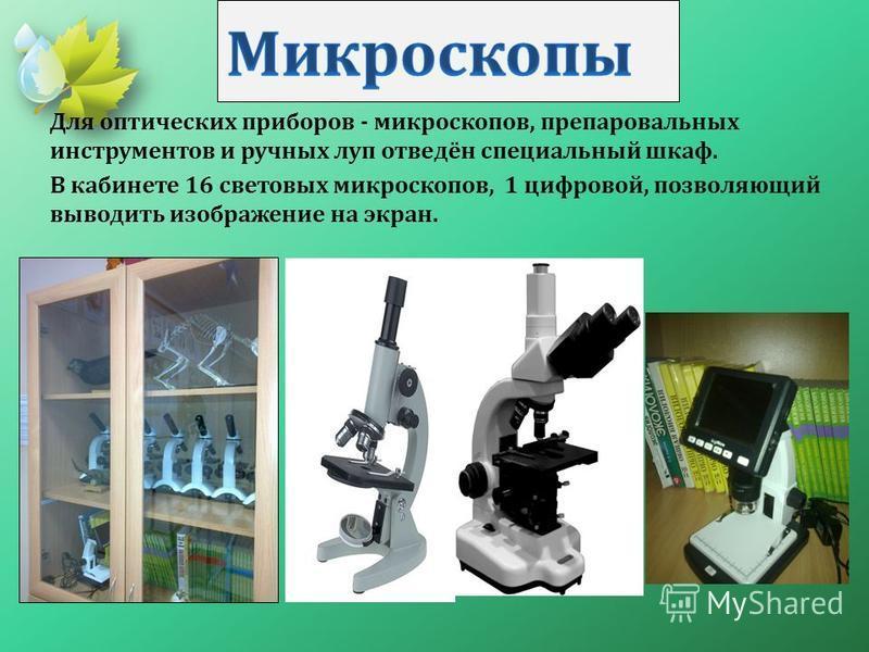 Для оптических приборов - микроскопов, препаровальных инструментов и ручных луп отведён специальный шкаф. В кабинете 16 световых микроскопов, 1 цифровой, позволяющий выводить изображение на экран.