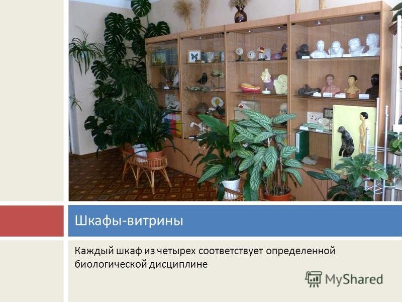 Каждый шкаф из четырех соответствует определенной биологической дисциплине Шкафы - витрины