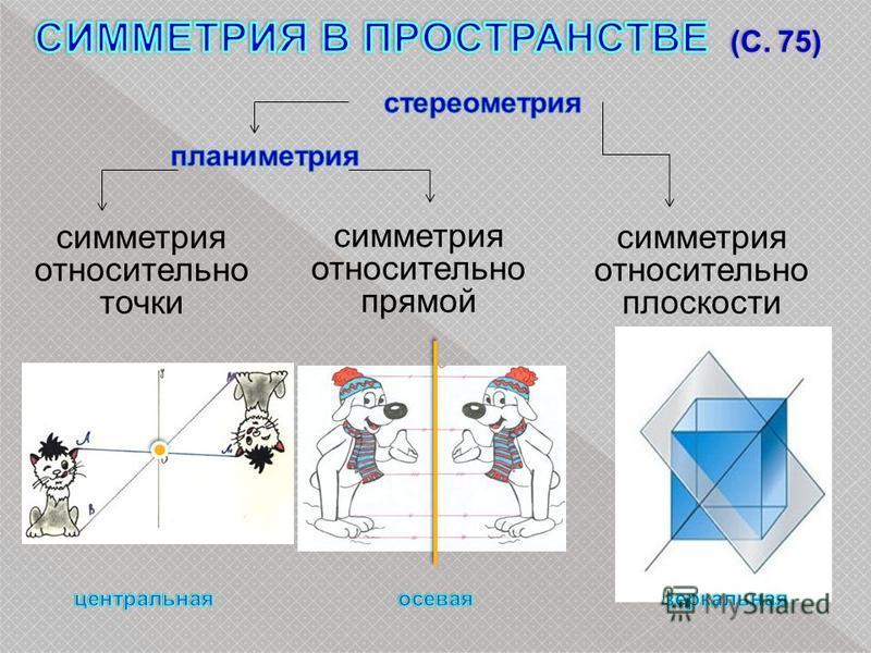 симметрия относительно точки симметрия относительно прямой симметрия относительно плоскости