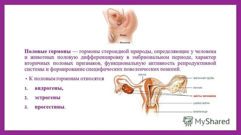 Половые гормоны гормоны стероидной природы, определяющие у человека и животных половую дифференцировку в эмбриональном периоде, характер вторичных половых признаков, функциональную активность репродуктивной системы и формирование специфических поведе