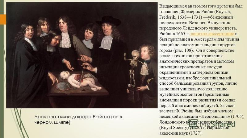 Выдающимся анатомом того времени был голландец Фредерик Рюйш (Ruysch, Frederik, 16381731) убежденный последователь Везалия. Выпускник передового Лейденского университета, Рюйш в 1665 г. защитил диссертацию и был приглашен в Амстердам для чтения лекци
