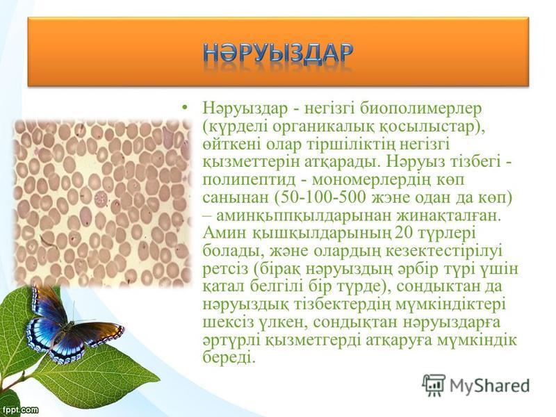Нәруыздар - негізгі биополимерлер (күрделі органикалық қосылыстар), өйткені олар тіршіліктің негізгі қызметтерін атқарады. Нәруыз тізбегі - полипептид - мономерлердің көп санынан (50-100-500 жэне одан да көп) – аминқьппқылдарынан жинақталған. Амин қы