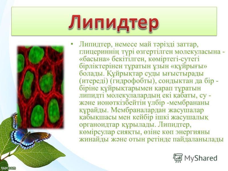 Липидтер, немесе май тәрізді заттар, глицериннің түрі өзгертілген молекуласына - «басына» бекітілген, көміртегі-сутегі бірліктерінен тұратын ұзын «құйрығы» болады. Құйрықтар суды ығыстырады (итереді) (гидрофобты), сондыктан да бір - біріне құйрықтары