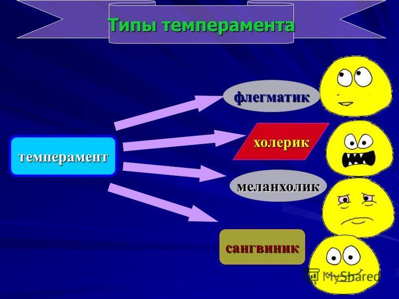 темперамент Типы темперамента сангвиник меланхолик холерик флегматик