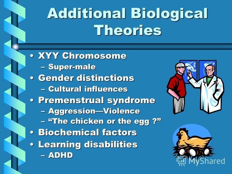 Additional Biological Theories XYY ChromosomeXYY Chromosome –Super-male Gender distinctionsGender distinctions –Cultural influences Premenstrual syndromePremenstrual syndrome –AggressionViolence –The chicken or the egg ? Biochemical factorsBiochemica