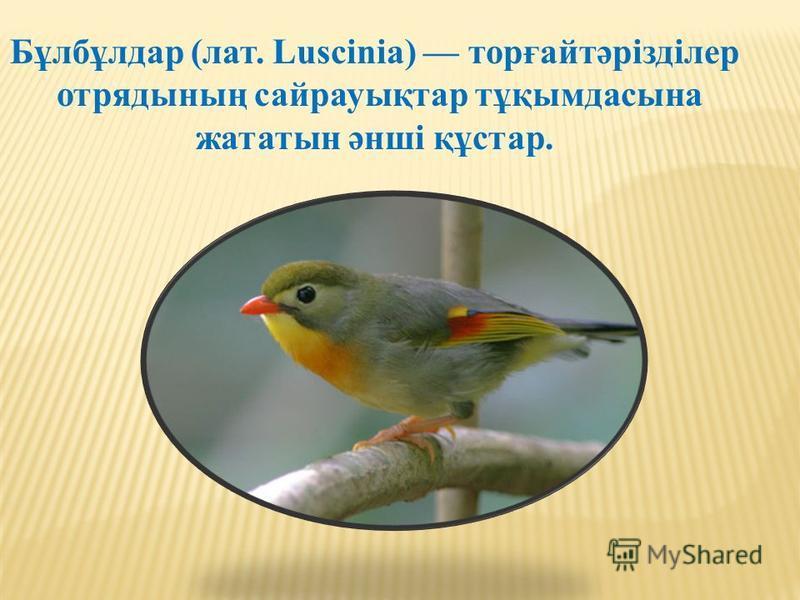 Бұлбұлдар (лат. Luscinia) торғайтәрізділер отрядының сайрауықтар тұқымдасына жататын әнші құстар.