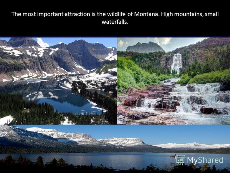 The most important attraction is the wildlife of Montana. High mountains, small waterfalls.