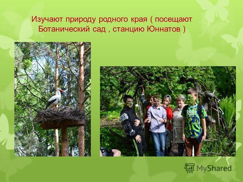 Изучают природу родного края ( посещают Ботанический сад, станцию Юннатов )