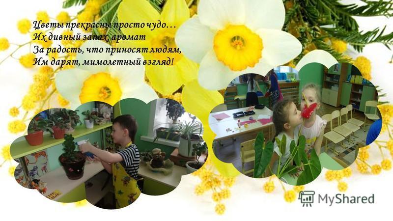 Цветы прекрасны просто чудо… Их дивный запах, аромат За радость, что приносят людям, Им дарят, мимолетный взгляд!