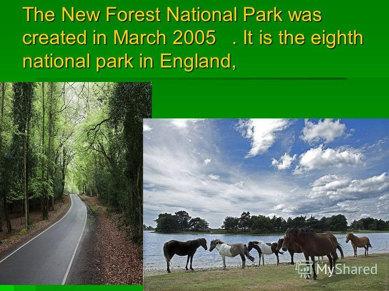 The New Forest National Park was created in March 2005. It is the eighth national park in England,.