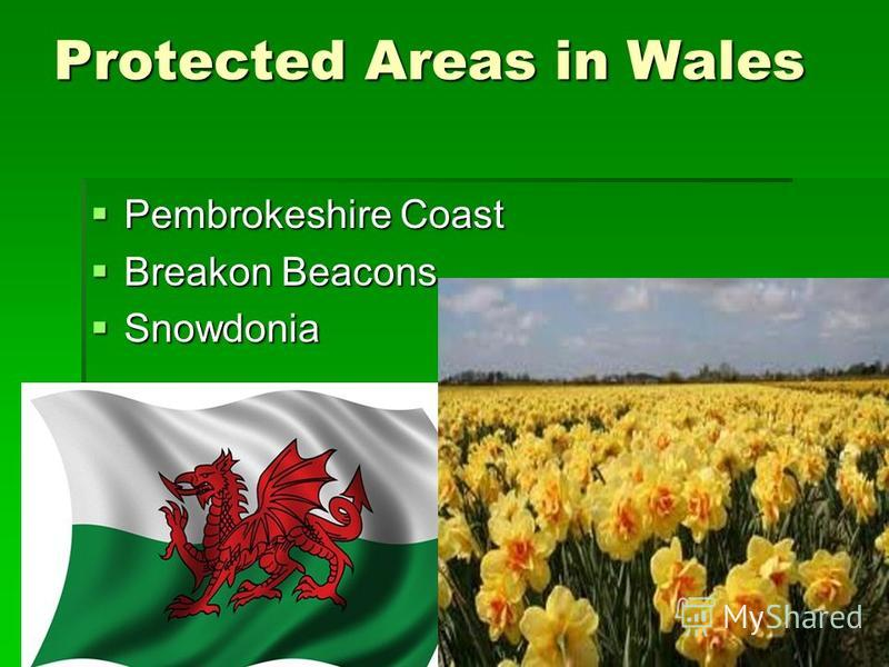Protected Areas in Wales Pembrokeshire Coast Pembrokeshire Coast Breakon Beacons Breakon Beacons Snowdonia Snowdonia