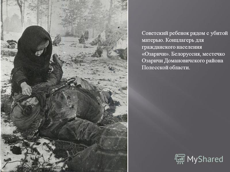 Советский ребенок рядом с убитой матерью. Концлагерь для гражданского населения «Озаричи». Белоруссия, местечко Озаричи Домановичского района Полесской области.