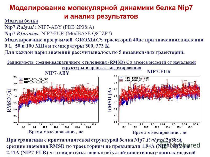 Модели белка Nip7 P.abyssi : NIP7-ABY (PDB 2P38:A) Nip7 P.furiosus: NIP7-FUR (ModBASE Q8TZP7) Моделирование программой GROMACS траекторий 40 нс при значениях давления 0.1, 50 и 100 MПa и температуры 300, 373 K. Для каждой пары значений рассчитывалось