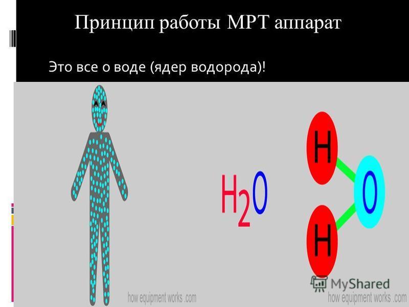 Принцип работы МРТ аппарат Это все о воде (ядер водорода)!