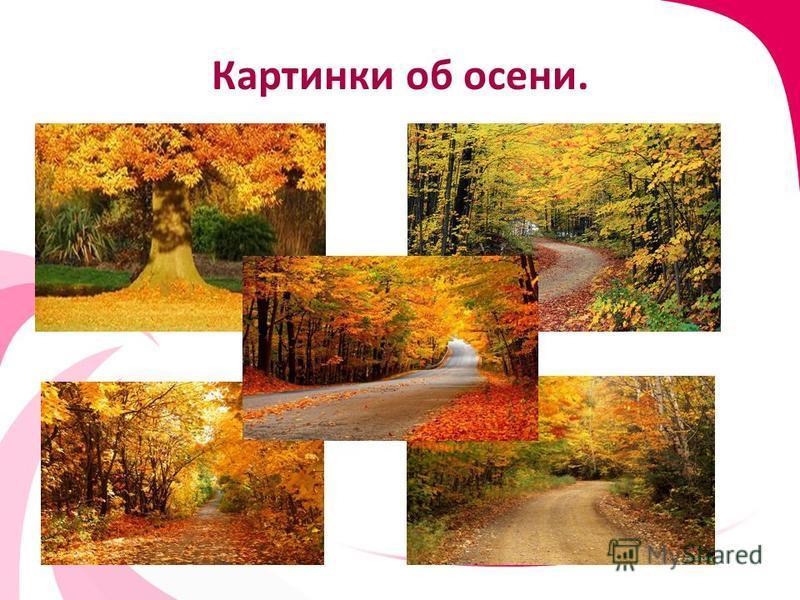 Картинки об осени.