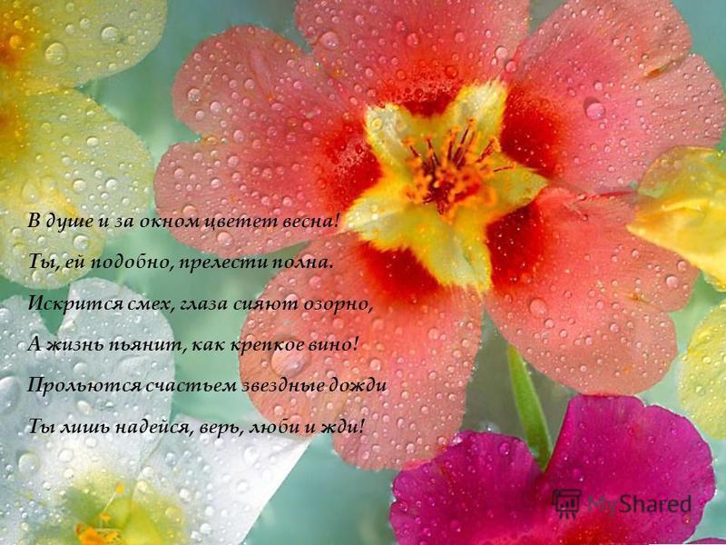 В душе и за окном цветет весна! Ты, ей подобно, прелести полна. Искрится смех, глаза сияют озорно, А жизнь пьянит, как крепкое вино! Прольются счастьем звездные дожди Ты лишь надейся, верь, люби и жди!