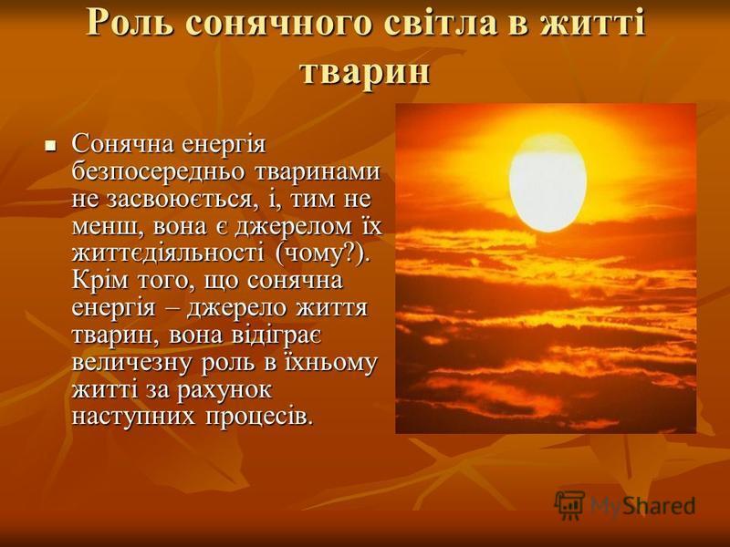 Роль сонячного світла в житті тварин Сонячна енергія безпосередньо тваринами не засвоюється, і, тим не менш, вона є джерелом їх життєдіяльності (чому?). Крім того, що сонячна енергія – джерело життя тварин, вона відіграє величезну роль в їхньому житт