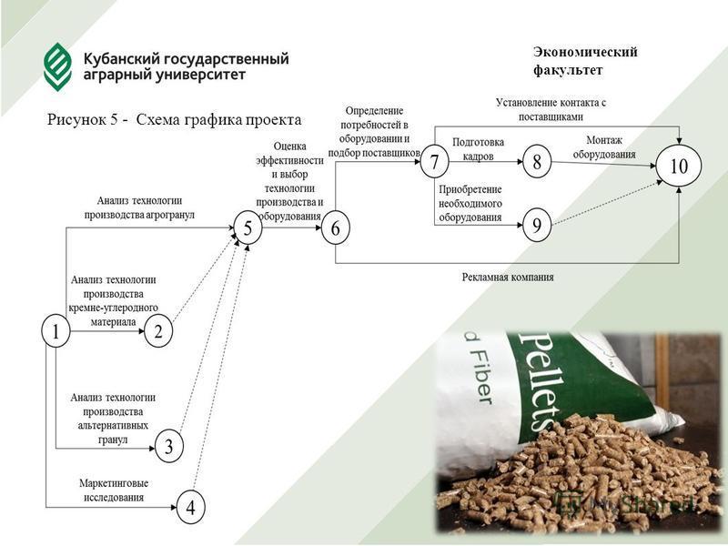 Экономический факультет Рисунок 5 - Схема графика проекта