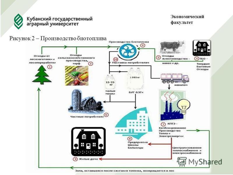 Рисунок 2 – Производство биотоплива