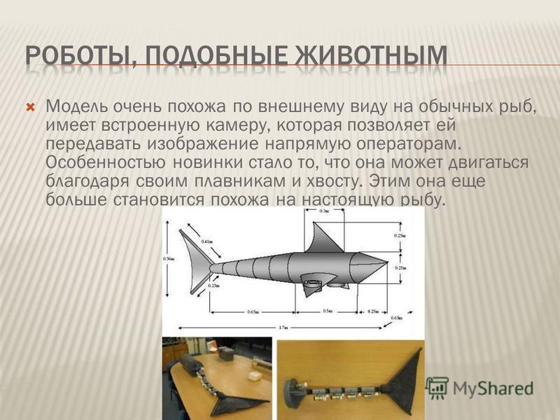 Модель очень похожа по внешнему виду на обычных рыб, имеет встроенную камеру, которая позволяет ей передавать изображение напрямую операторам. Особенностью новинки стало то, что она может двигаться благодаря своим плавникам и хвосту. Этим она еще бол