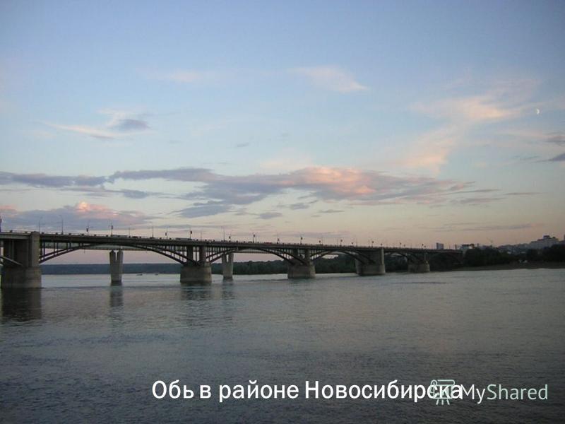 Обь в районе Новосибирска