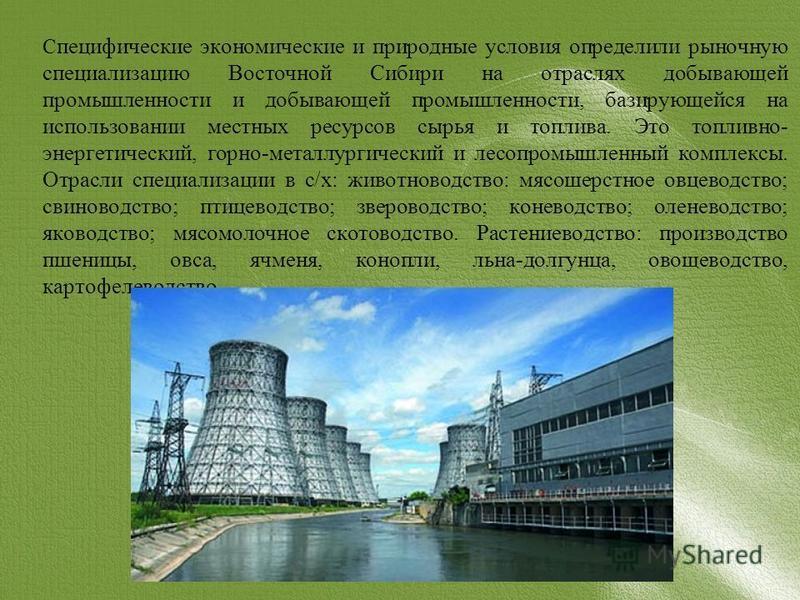 С пецифические экономические и природные условия определили рыночную специализацию Восточной Сибири на отраслях добывающей промышленности и добывающей промышленности, базирующейся на использовании местных ресурсов сырья и топлива. Это топливно- энерг