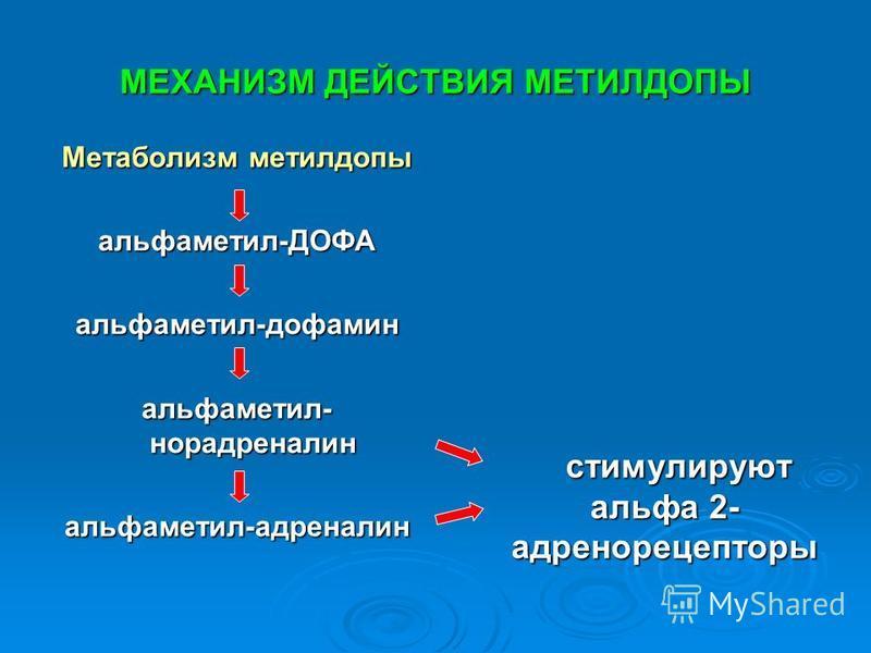 МЕХАНИЗМ ДЕЙСТВИЯ МЕТИЛДОПЫ Метаболизм метилдопы альфа метил-ДОФАальфа метил-дофамин альфа метил- норадреналин альфа метил-адреналин стимулируют альфа 2- адренорецепторы стимулируют альфа 2- адренорецепторы
