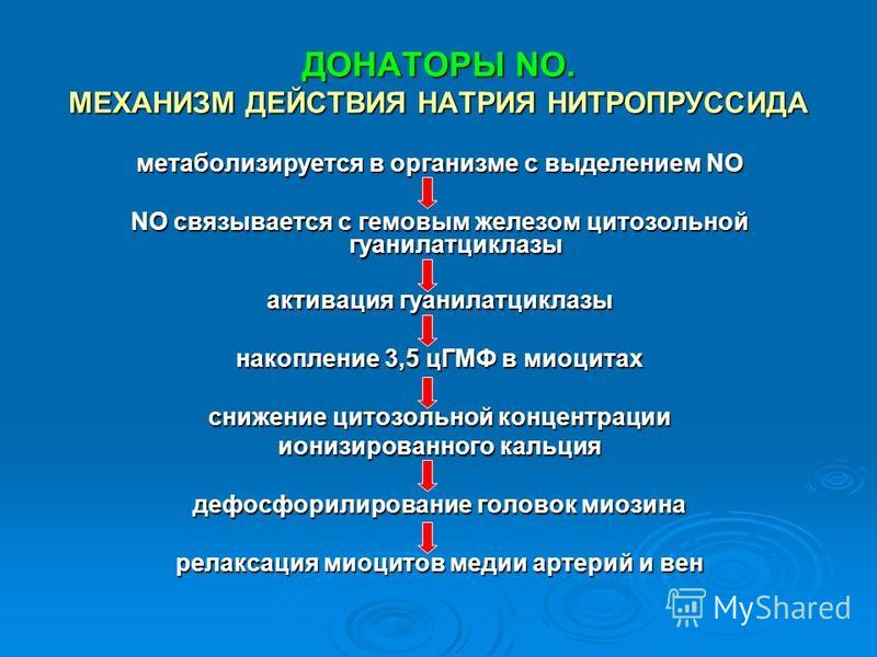ДОНАТОРЫ NO. МЕХАНИЗМ ДЕЙСТВИЯ НАТРИЯ НИТРОПРУССИДА метаболизируется в организме с выделением NO NO связывается с гемовым железом цитозольной гуанилатциклазы активация гуанилатциклазы накопление 3,5 цГМФ в миоцитах снижение цитозольной концентрации и