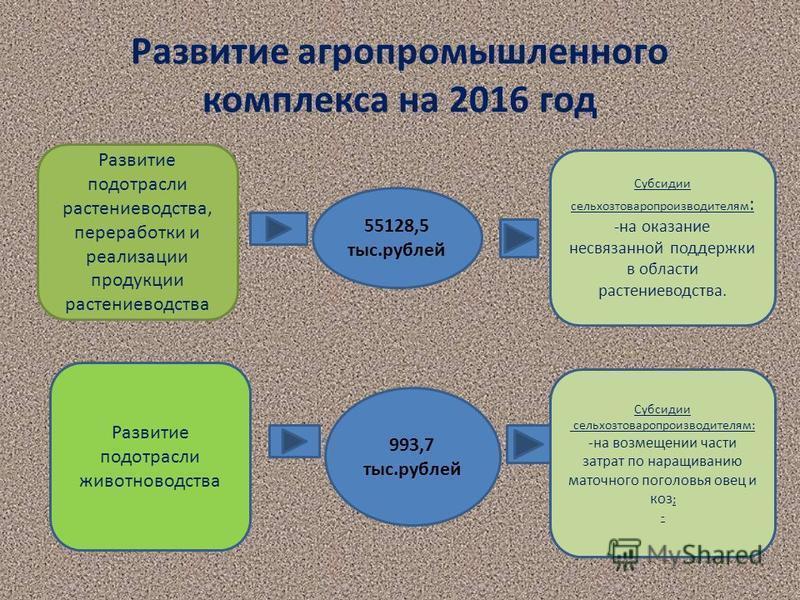 Развитие агропромышленного комплекса на 2016 год Развитие подотрасли растениеводства, переработки и реализации продукции растениеводства 55128,5 тыс.рублей Субсидии сельхозтоваропроизводителям : -на оказание несвязанной поддержки в области растениево
