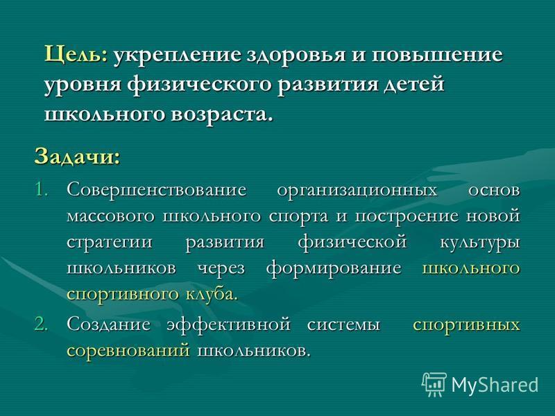 МОУ « Мичуринская средняя общеобразовательная школа» Реализация программы проекта «Школьный спорт»