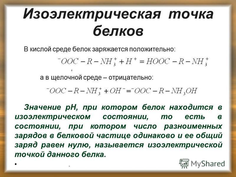Изоэлектрическая точка белков В кислой среде белок заряжается положительно:, а в щелочной среде – отрицательно: Значение pH, при котором белок находится в изоэлектрическом состоянии, то есть в состоянии, при котором число разноименных зарядов в белко