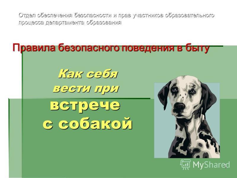 1 Как себя вести при встрече с собакой Как себя вести при встрече с собакой Правила безопасного поведения в быту Отдел обеспечения безопасности и прав участников образовательного процесса департамента образования