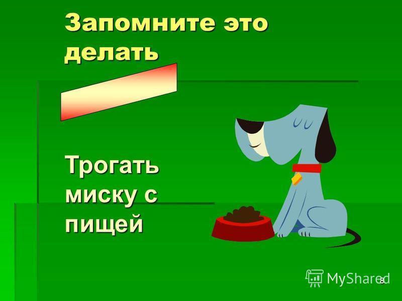 8 Запомните это делать Трогать миску с пищей