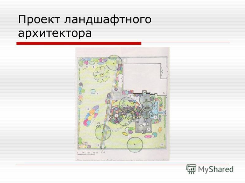 Проект ландшафтного архитектора