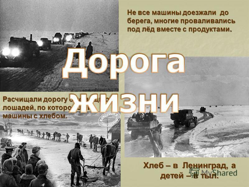 Не все машины доезжали до берега, многие проваливались под лёд вместе с продуктами. Хлеб – в Ленинград, а детей – в тыл. Расчищали дорогу с помощью лошадей, по которой шли машины с хлебом.