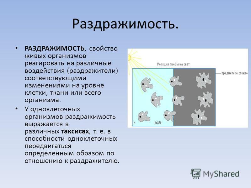 Раздражимость. РАЗДРАЖИМОСТЬ, свойство живых организмов реагировать на различные воздействия (раздражители) соответствующими изменениями на уровне клетки, ткани или всего организма. У одноклеточных организмов раздражимость выражается в различных такс